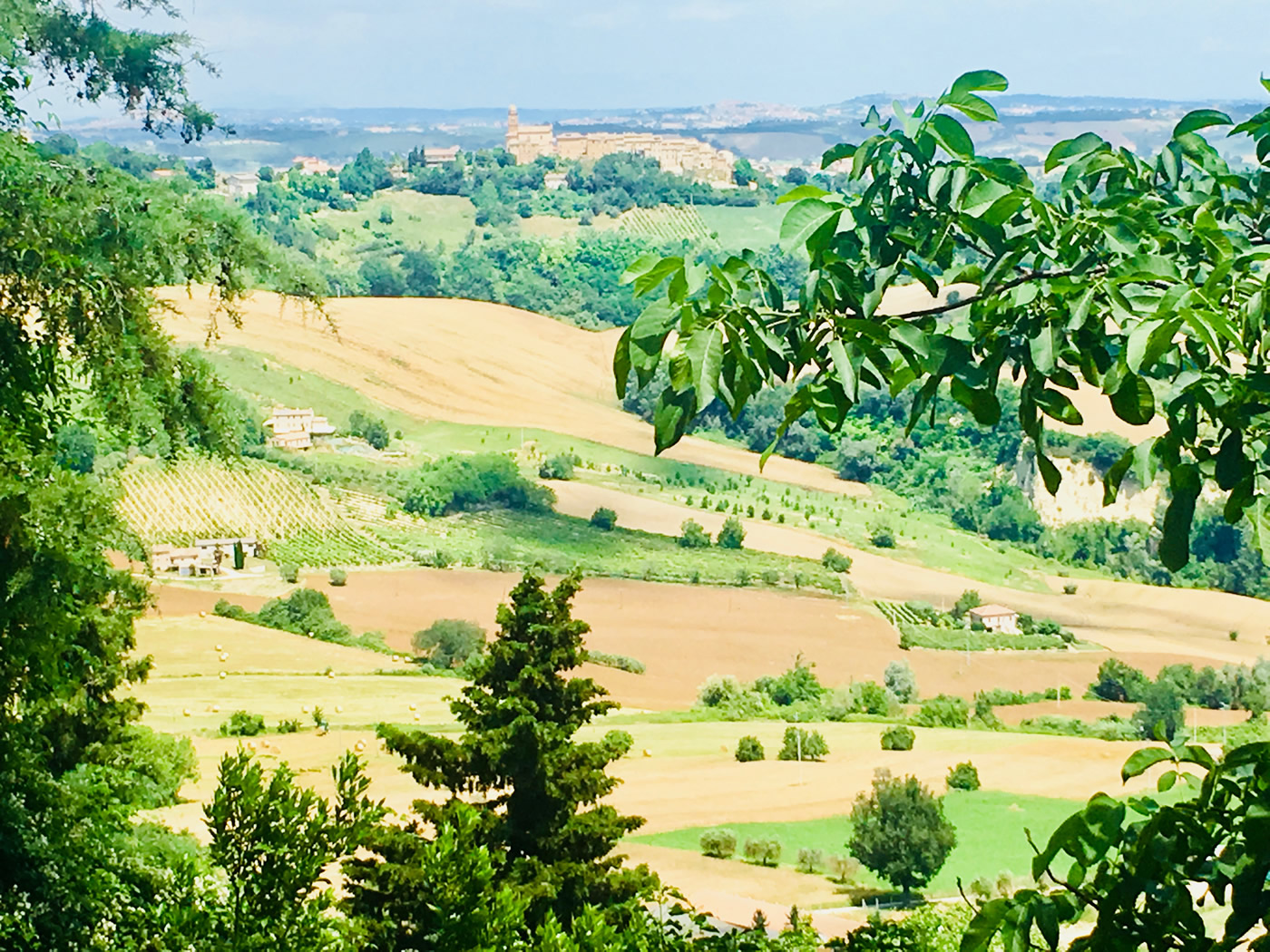 10 reasons to visit le marche